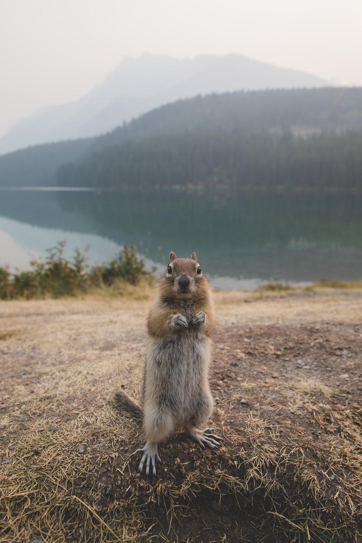 yann-thefrenchoutdoors-instameet-instagram-photographe-outdoors-aventure-bivouac-1